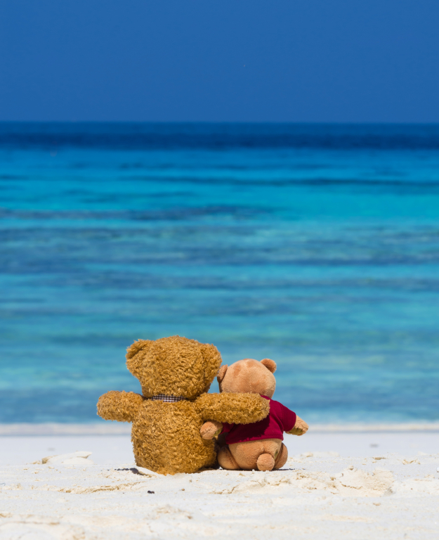 Two TEDDY BEAR brown color sitting on the beautiful beach with b