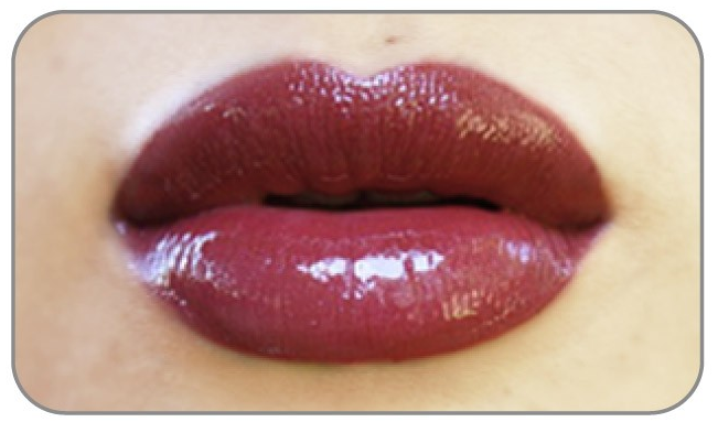 Smashbox_lip_liner_gloss
